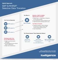 SAP S/4HANA - podejście hybrydowe - miniaturka